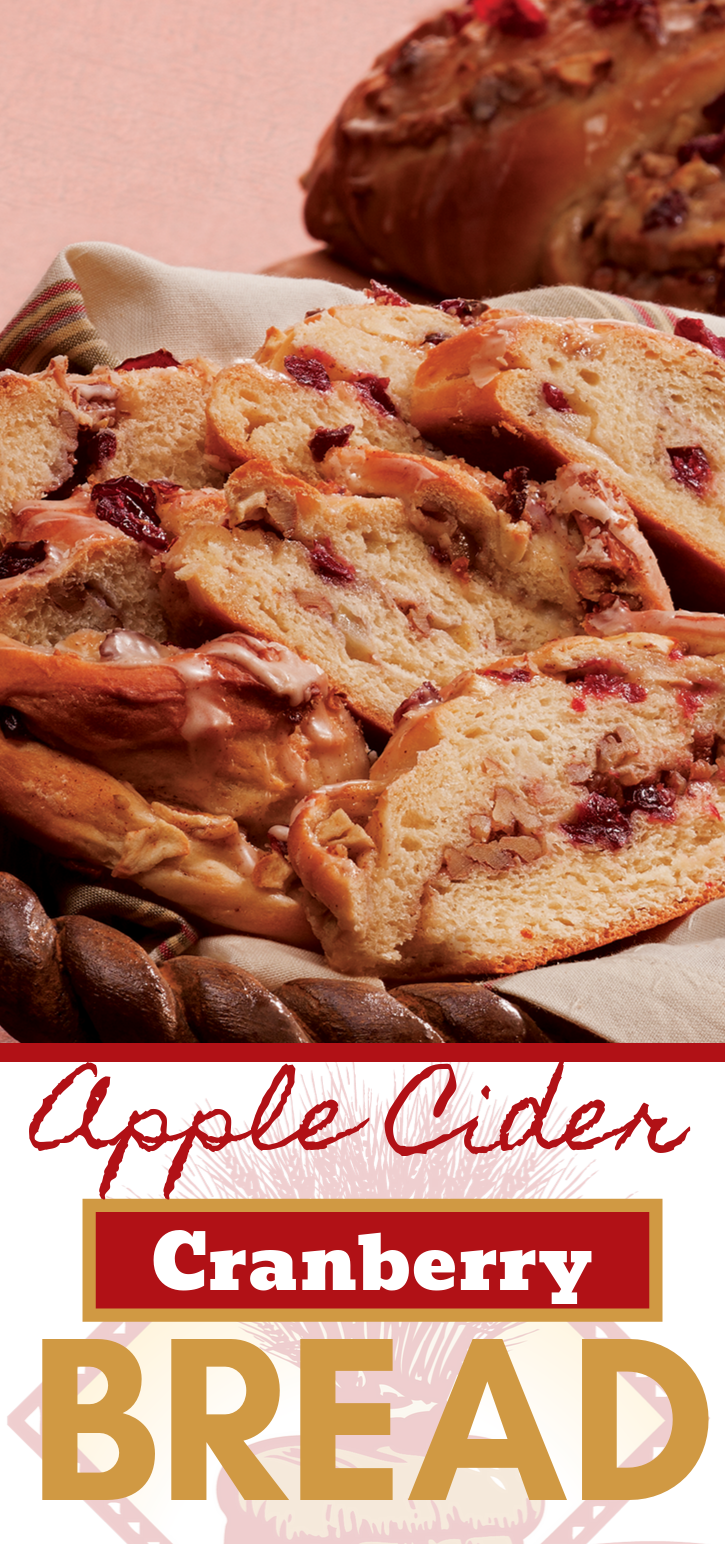 This is a perfect fall bread! Apple Cider Cranberry Bread is going to be a new family favorite.