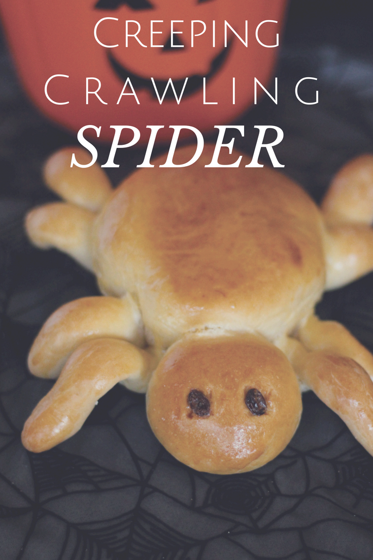 This Creepy Crawling spider is sure to give any party goer the heebie jeebies!